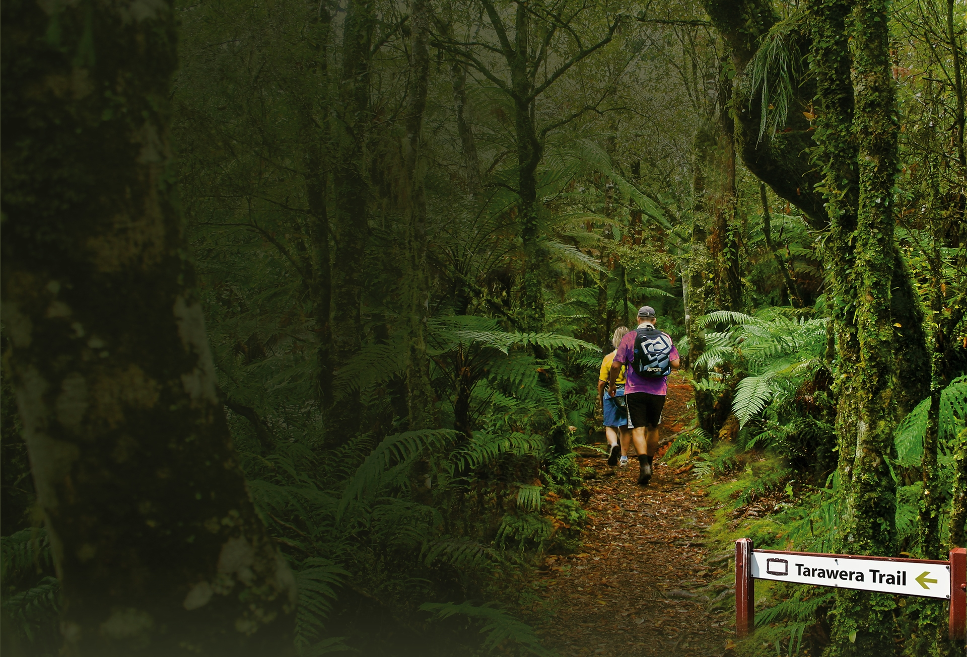 tarawera-trail-walk